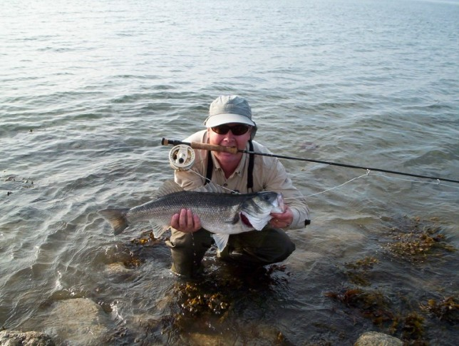 Fly fishing for bass from the shore bass anglers for Bass fishing from shore