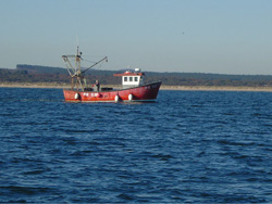 Inshore commercial fishing