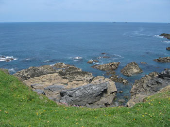 Image: photo a few rocks, gullies, weedy, tidal movement, may be worth a go