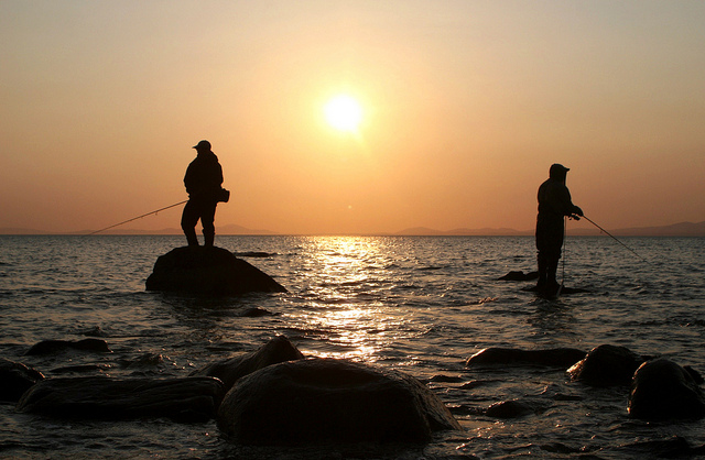 Duelling anglers