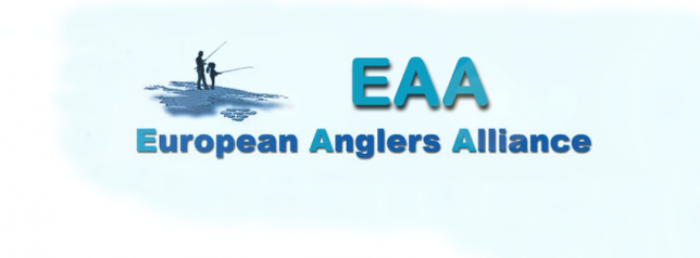 EAA facebook header
