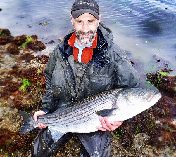 A large Striper landed with the aid of a Van Stall reel