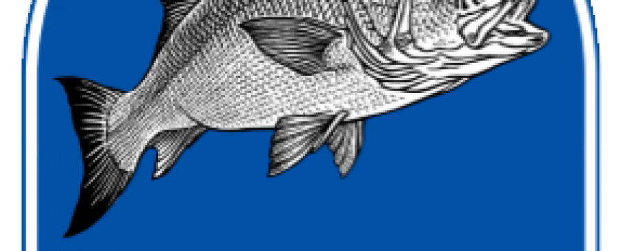 Reply to UK Consultation on Future Fisheries Policies
