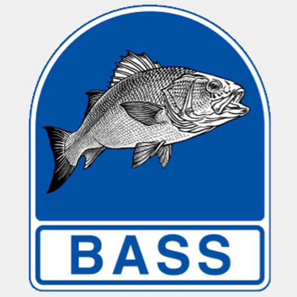 BASS Membership
