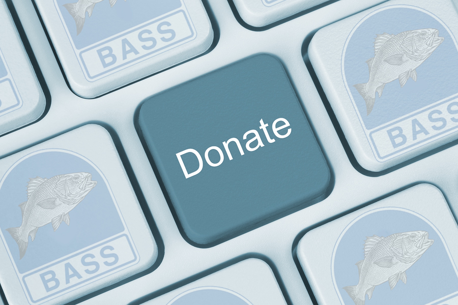 Donate To BASS